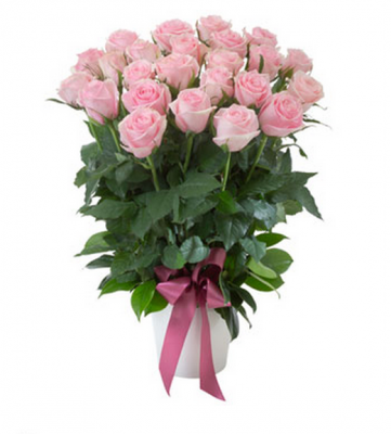 Gift flowers sitges luxury roses in ceramic pot in sitges 20 pink roses in ceramic pot negle Images